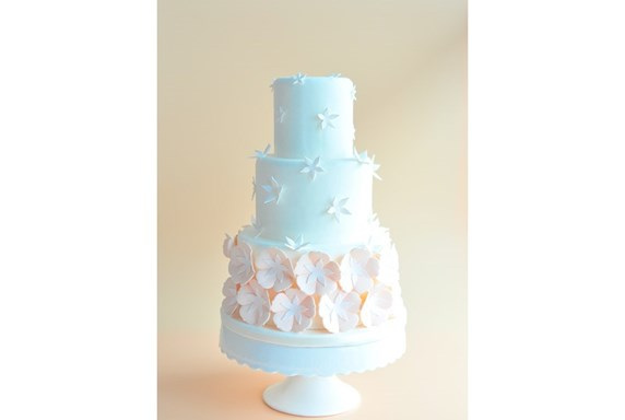 Wedding Cake Spring Sale