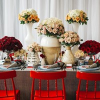 Fashionably Red - A Valentine Engagement Soiree