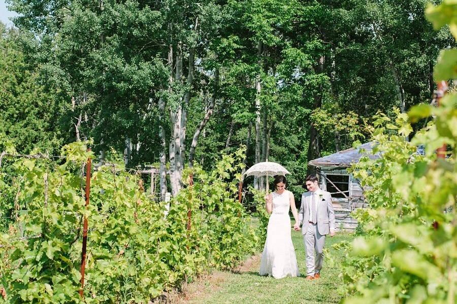 Wedding at Holland Marsh Wineries, Newmarket, Ontario, Sarah Wiggins Photography, 12