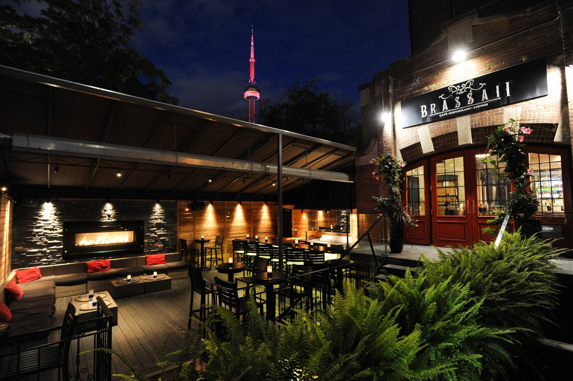 Image result for brassaii toronto