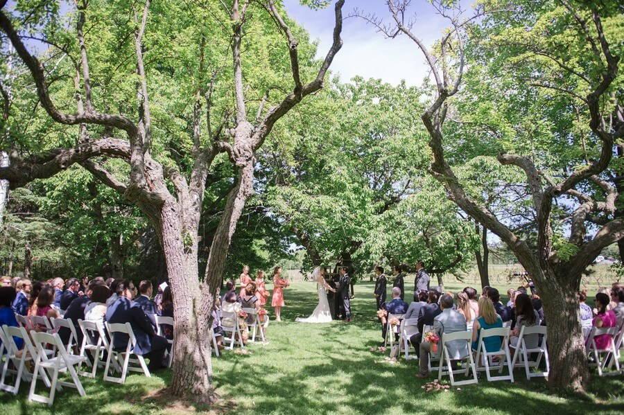 Wedding at Kurtz Orchards, Toronto, Ontario, Krista Fox Photography, 27