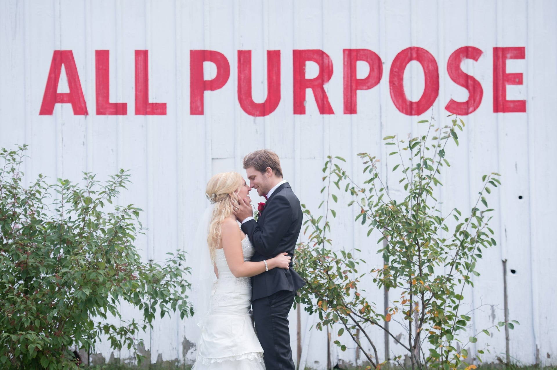 Hero image for Top Toronto Wedding Officiants Share Their Best Advice For a Long and Happy Marriage