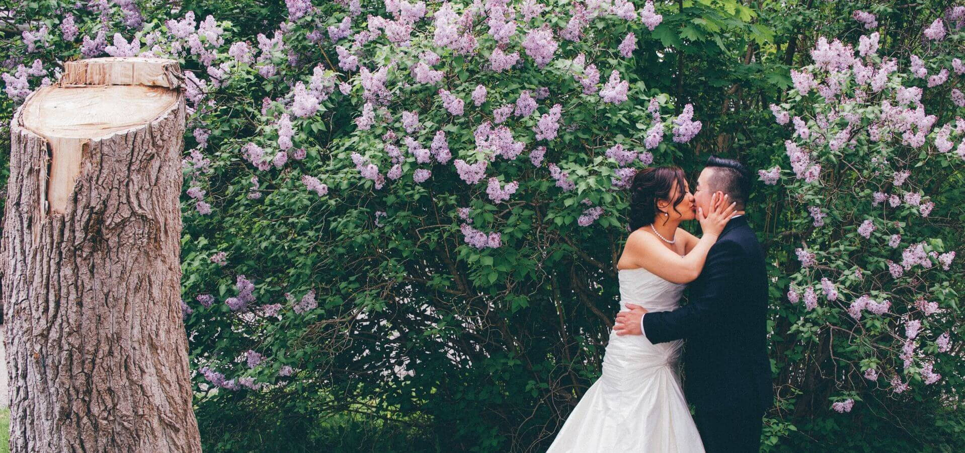 Hero image for Michelle and Jeff's Lovely Wedding At Angus Glen Golf Club