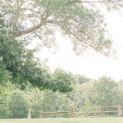 Thumbnail for Amber and Andrew's Gorgeous Barn Wedding at Twin Creeks Farm