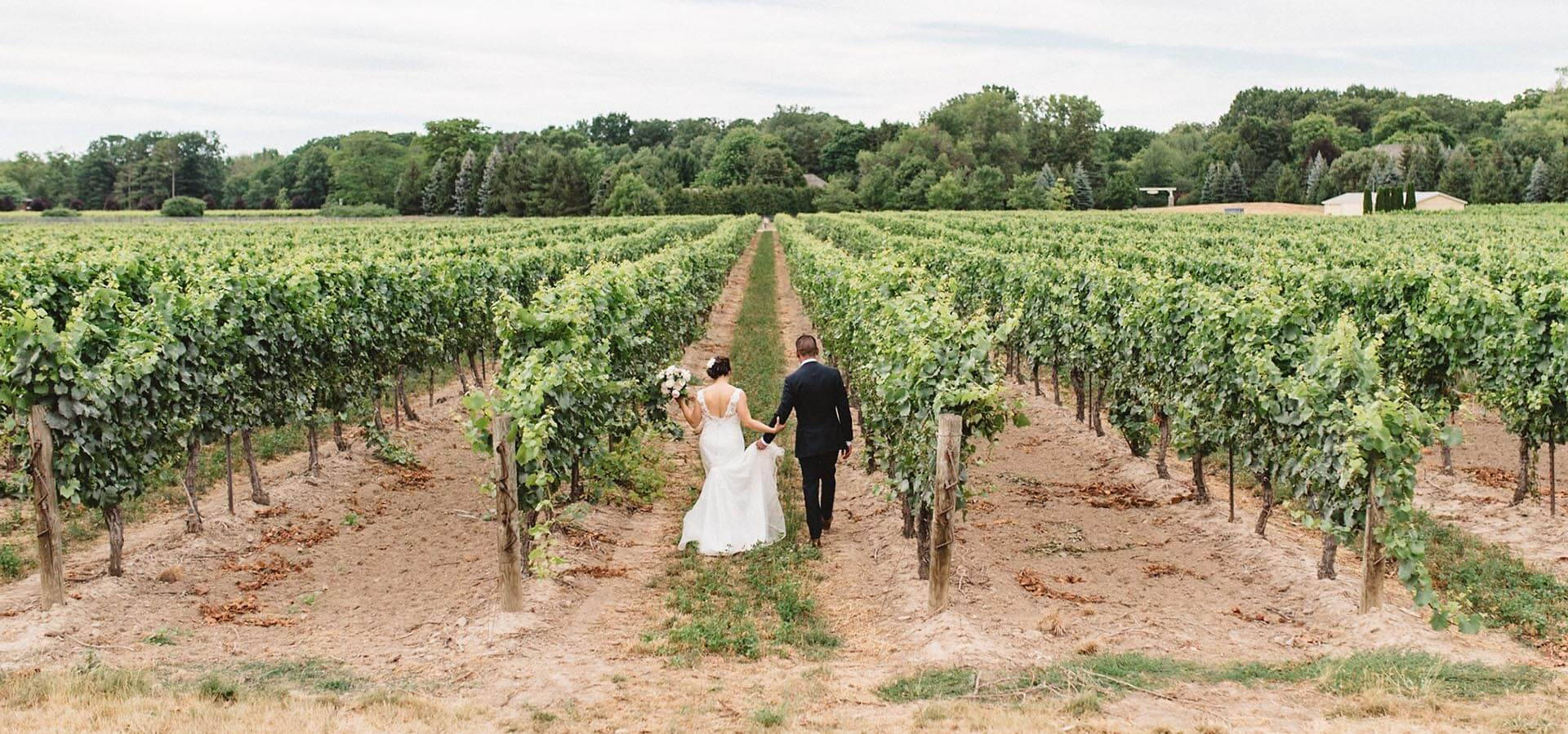 Hero image for Jovy and Randy's Intimate Vineyard Wedding at Kurtz Orchards