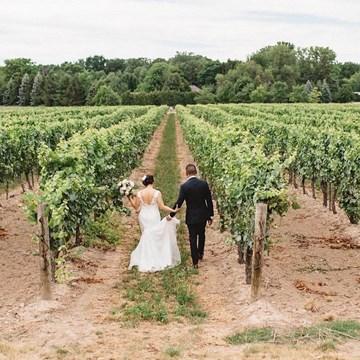 Jovy and Randy's Intimate Vineyard Wedding at Kurtz Orchards