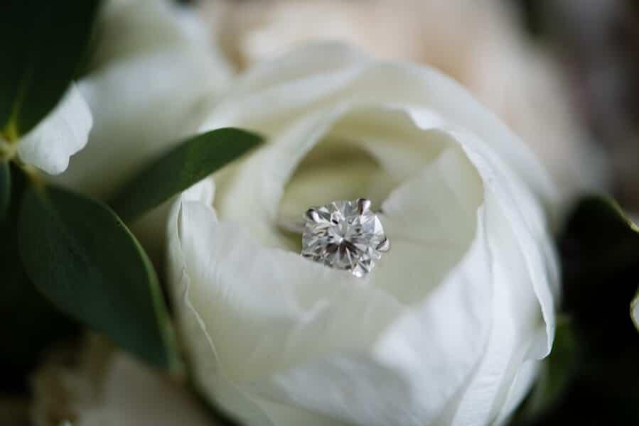 Wedding at The Royal Conservatory, Toronto, Ontario, Phototerra, 1