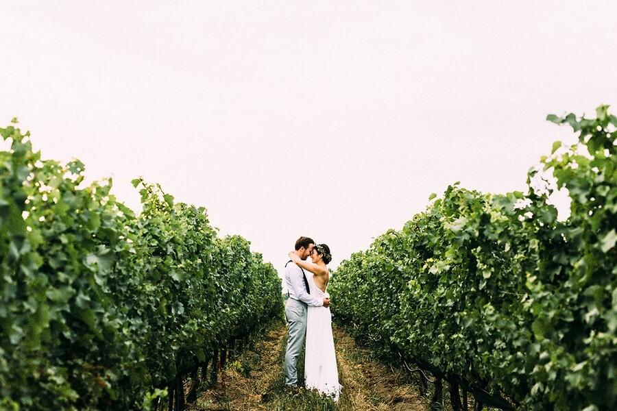 Ravine Vineyards