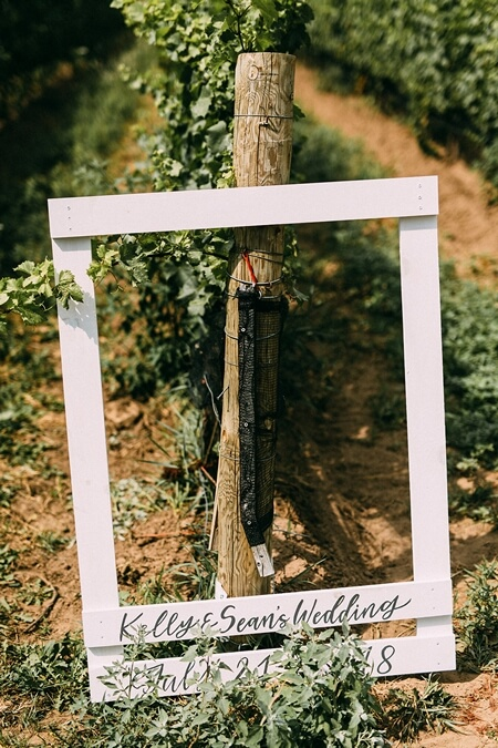Wedding at Ravine Vineyard, Niagara-on-the-Lake, Ontario, Young Glass Photography, 23