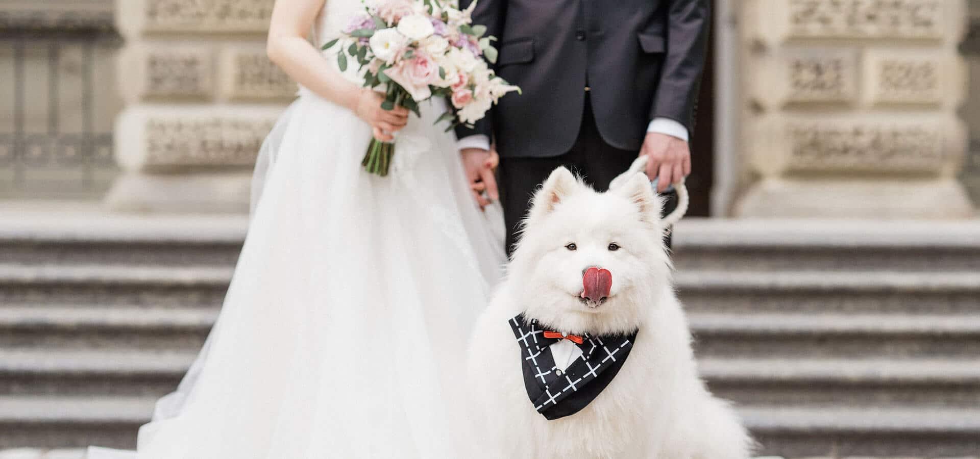 Hero image for Christina and Tao's Sweet Shangri-La Wedding