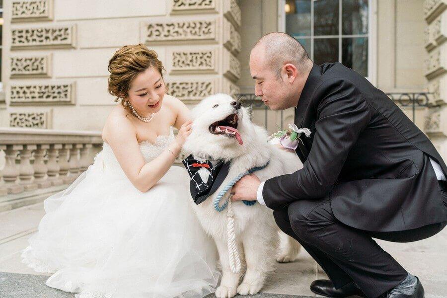 Wedding at Shangri-La Hotel, Toronto, Toronto, Ontario, Rhythm Photography, 17