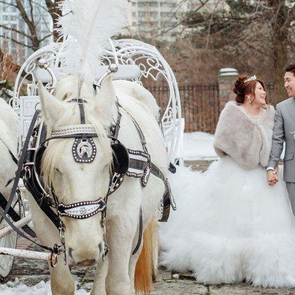 Thumbnail for Olivia and Benson's Magical Graydon Hall Wedding