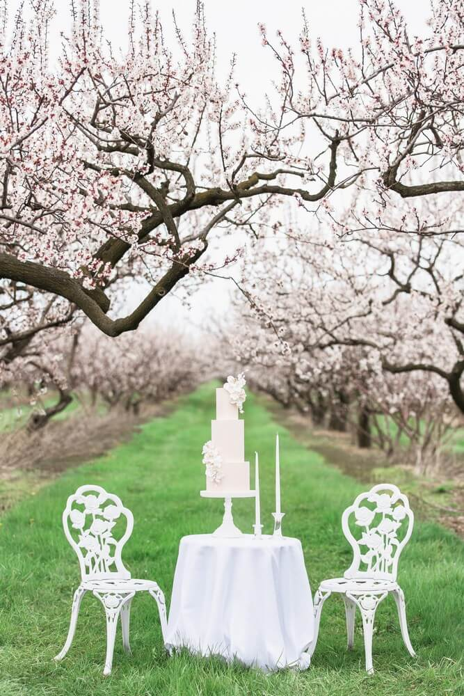 romantic earthy spring cherry blossom styled shoot, 21