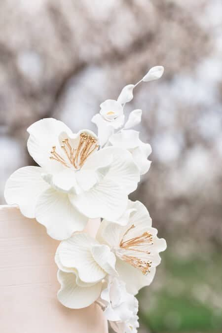 romantic earthy spring cherry blossom styled shoot, 22