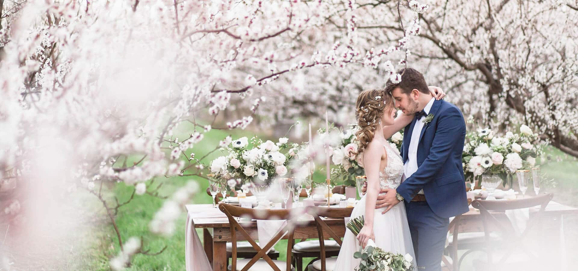 Hero image for Romantic, Earthy Spring Cherry Blossom Styled Shoot