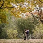 Thumbnail for Toronto Wedding Photographers Share Their Best Fall Photos from this Season