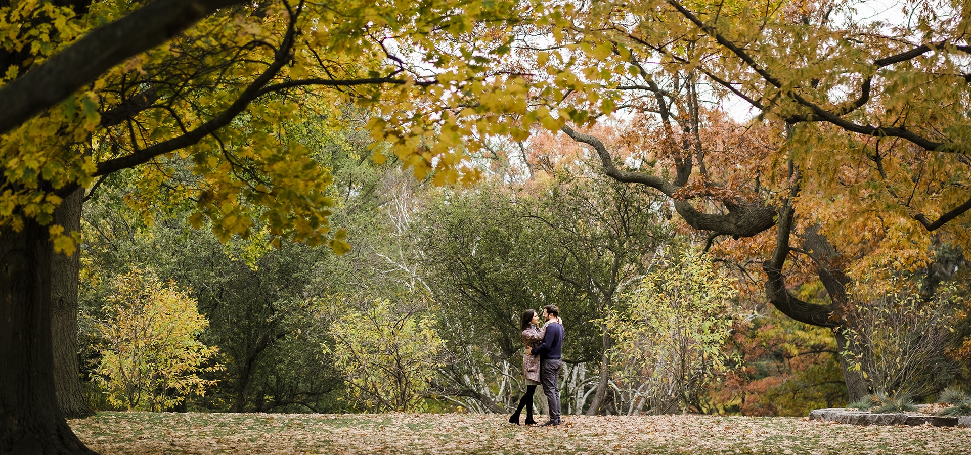 Hero image for Toronto Wedding Photographers Share Their Best Fall Photos from this Season