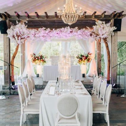Princess Decor featured in Ashley and Cliten's Outdoor Wedding at the Arlington Estate