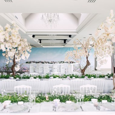Blushing Aura Event Coordination & Design