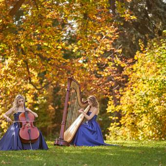 Harp and Cello Twins