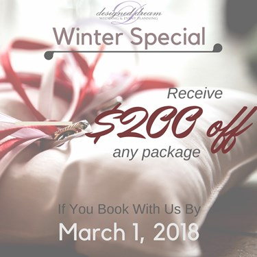 Winter Special $200 off