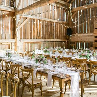 Harvest Tables at Cambium Farms
