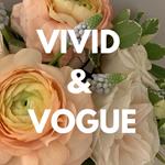Vivid & Vogue