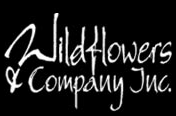 Wildflowers & Company